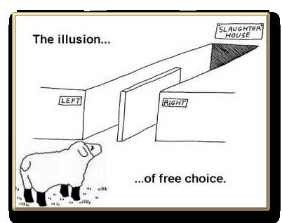 La DEMOCRAZIA oggi è IRRAZIONALE?
